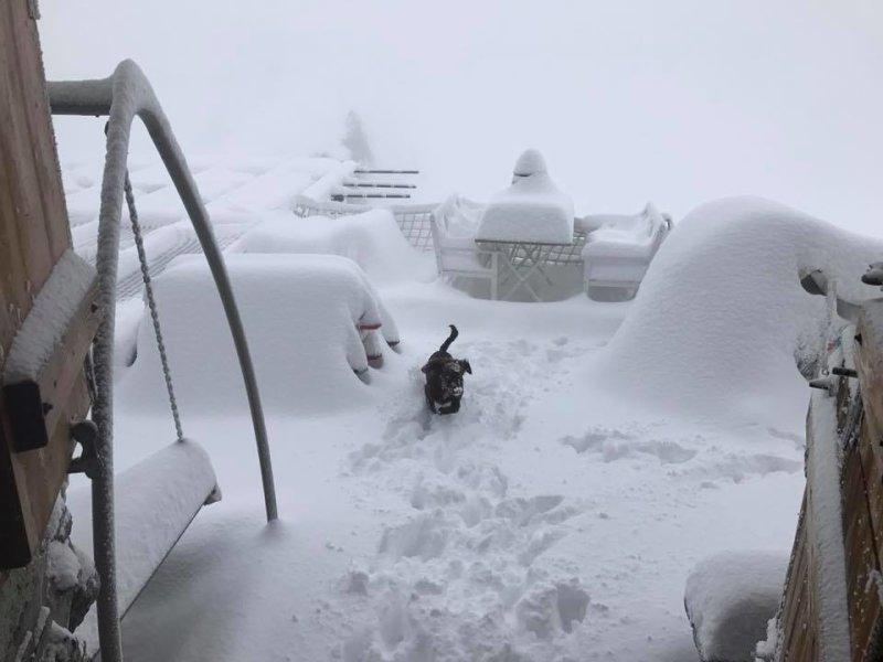Cabane des viñetas.  3160 metros chalet en Suiza - Haga clic en la imagen para agrandar