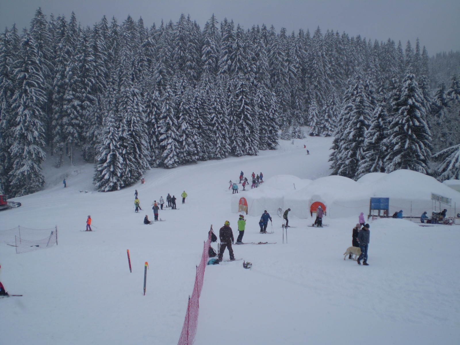 Doval-2011.-advent-067.jpg
