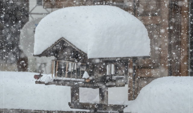 Tegnap reggelre komoly havazás érte el az Alpok nagy részét. Ausztriában ff26e08890